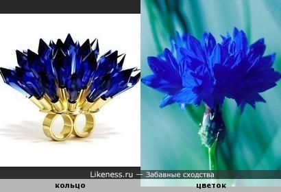 Двойное кольцо Джоджи Кодзима похоже на цветок василька.