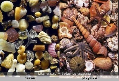 Макропесок- это микроракушки и миникамушки.