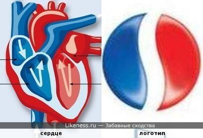 Пепси циркулирует в сердце.