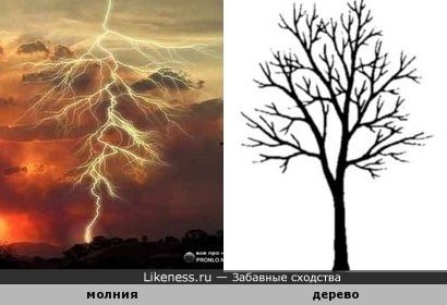Ветвистая молния
