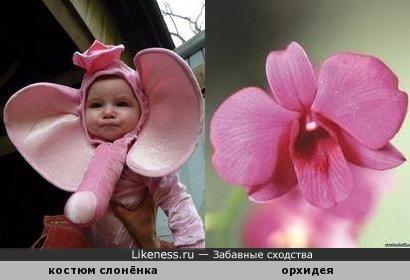 Только без пошлостей!)))