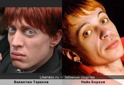Терехов и Борзов похожи