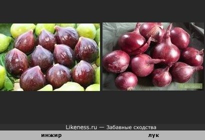 Сладку ягоду рвали вместе , горьку ягоду я одна...( В. Толкунова)