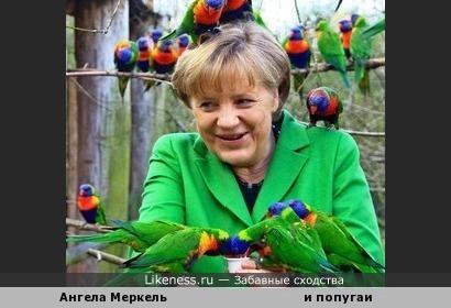 Со временем собака становится похожа на своего хозяина, но Меркель пошла обратным путём и решила походить на своих питомцев.