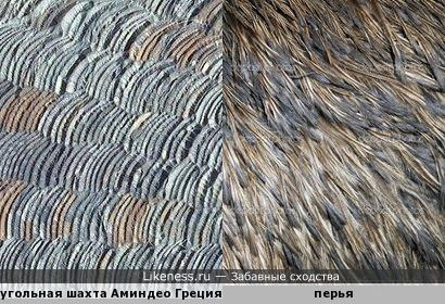 Угольная шахта напоминает то ли грубый вязаный свитер, то ли перья птиц.