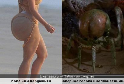 В фильме Эволюция прообразом для одного из монстров стала попа Кардашьян.