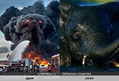 Над горящей автозаправкой был замечен летающий слон-демон с горящими глазами.