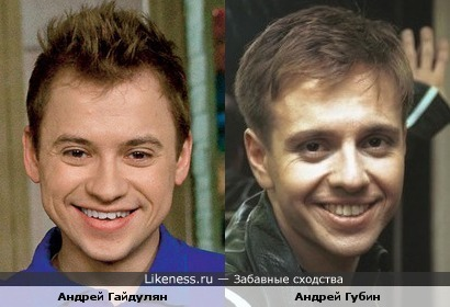 Андрей Гайдулян похож на Андрея Губина