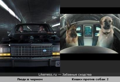 Люди в черном против Собак....