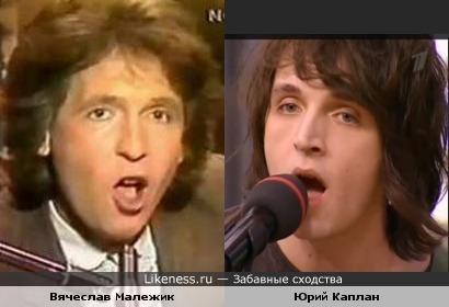 Юрий Каплан (aka Валентин Стрыкало) похож на Вячеслава Малежика