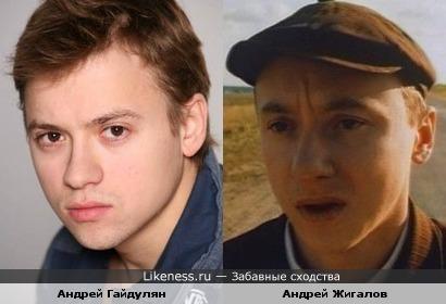 Андрей Гайдулян похож на Андрея Жигалова