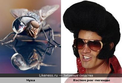 Двойники Элвиса Пресли
