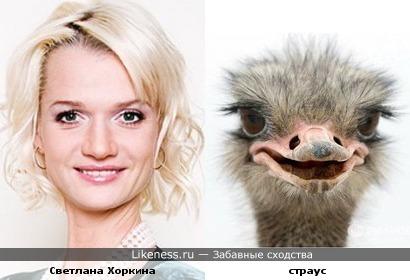 Светлана Хоркина всегда ассоциировалась с уткой или страусом