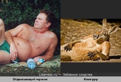 Владимир Жириновский и кенгуру