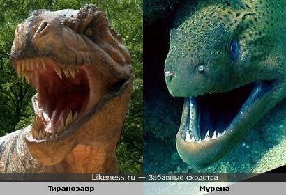 Тиранозавр и мурена