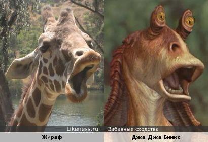 Джа Джа это жираф с глазами на рожках