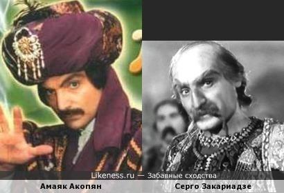 Амаяк Акопян и Серго Закариадзе похожи