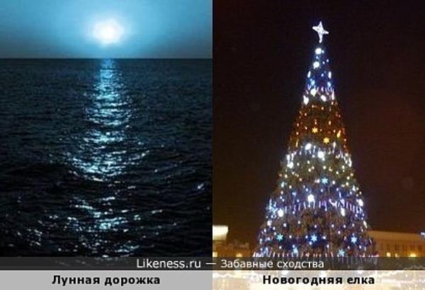 Лунная дорожка похожа на новогоднюю елку