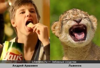 Андрей Аршавин - львенок
