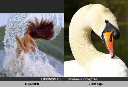 """Лебедь тут, вздохнув глубоко, молвила: """"Зачем далеко? Знай, близка судьба твоя, ведь царевна эта - я"""""""