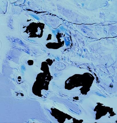 Монстр Антарктиды