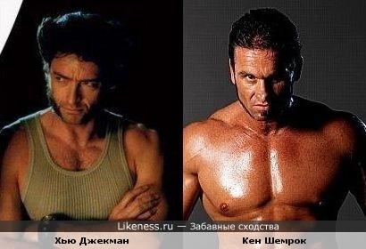 Хью Джекман похож на Кена Шемрока