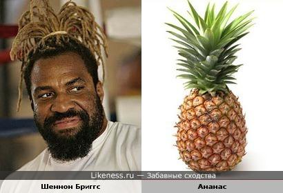 Шеннон Бриггс похож на ананас