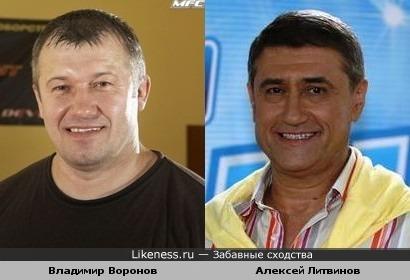 Владимир Воронов напомнил Алексея Литвинова