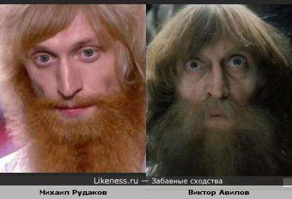 Михаил Рудаков похож на Виктора Авилова