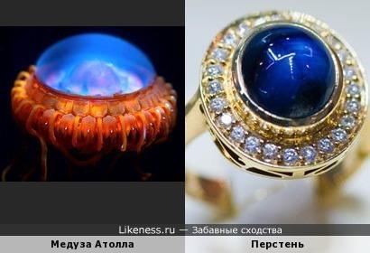 Медуза Атолла напомнила Перстень
