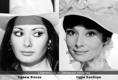Эдвиж Фенек и Одри Хепберн