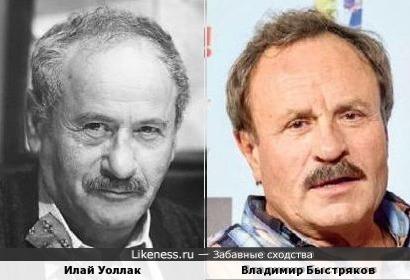 Илай Уоллак и Владимир Быстряков