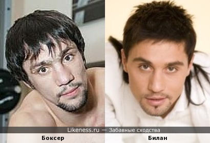 Боксер и Билан