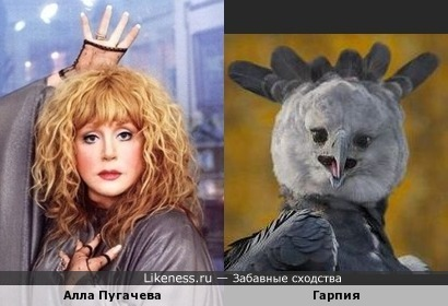 Алла Пугачева и Гарпия