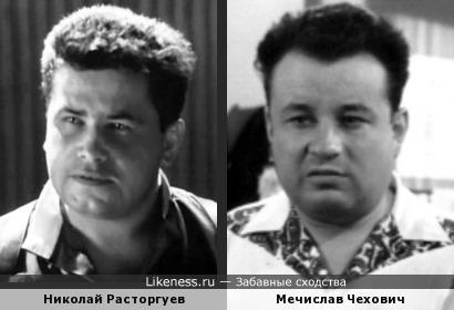 Николай Расторгуев похож на поляка Чеховича