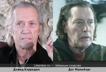 Даг Малмберг похож также на Дэвида Кэрредина (Кэррэдайна) - кому что больше понравится :-)
