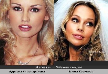 Адриана Скленарикова похожа на Елену Кориковы