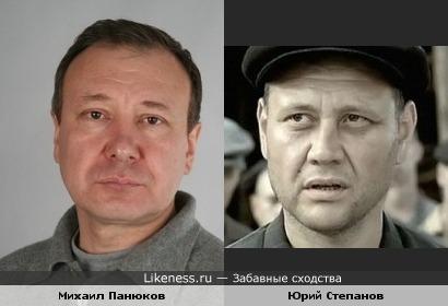 Михаил Панюков похож на Юрия Степанова