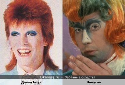 """Дэвид Боуи похож на попугая из мюзикла """"Мама"""""""