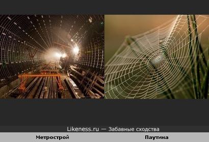Метрострой похож на паутину