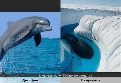 Рельеф известняковой горы в Памуккале (Турция) похож на дельфина
