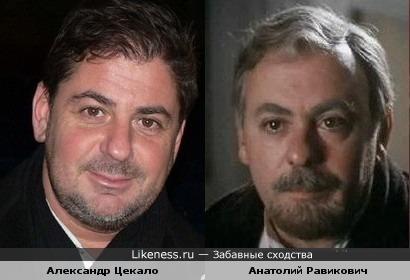 Александр Цекало похож на Анатолия Равиковича