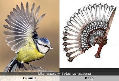 """""""Пальцы"""" веером"""