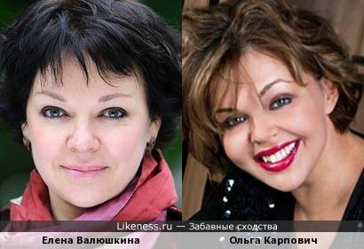 Ольга Карпович похожа на Елену Валюшкину