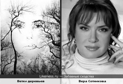 Расположение веток напоминают черты лица Веры Сотниковой