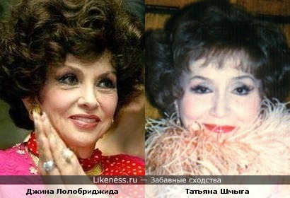 Джина Лолобриджида и Татьяна Шмыга похожи