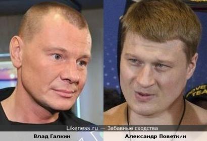 Боксер Александр Поветкин похож на актера Влада Галкина