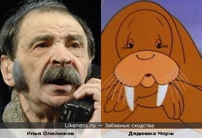 Илья Олейников похож на Дядюшку Моржа из м/ф