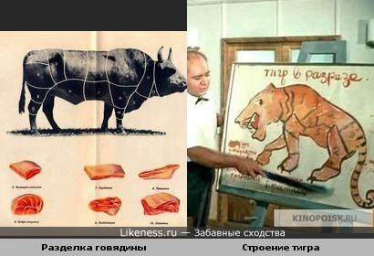 """Строение тигра из к/ф """"Полосатый рейс"""" напоминает разделку говядины"""