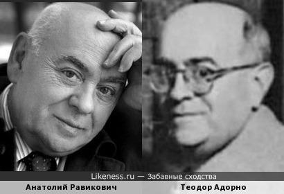Анатолий Равикович и Теодор Адорно